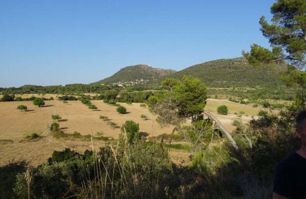 Can Paulino Mallorca - Ausritte - Umland