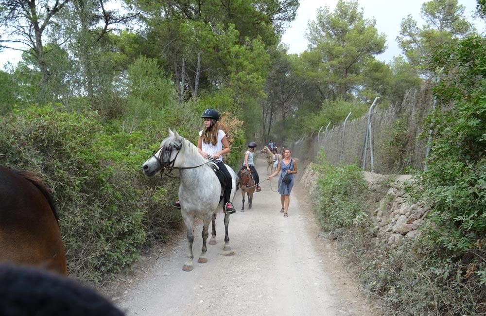 Can Paulino Mallorca - Ausritte - Gefuhrter Spazierritt